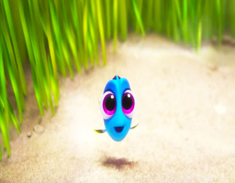 finding-dory-