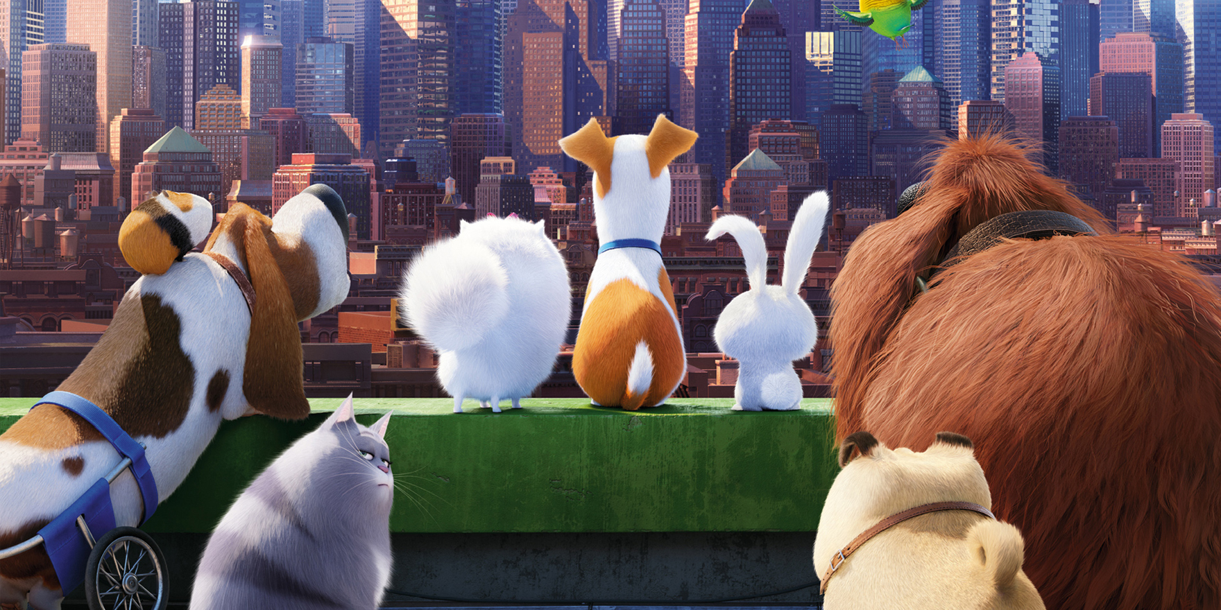 The Secret Life of Pets - Header Image