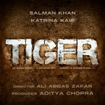 Tiger Zinda Hai_3