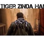 Tiger Zinda Hai_9