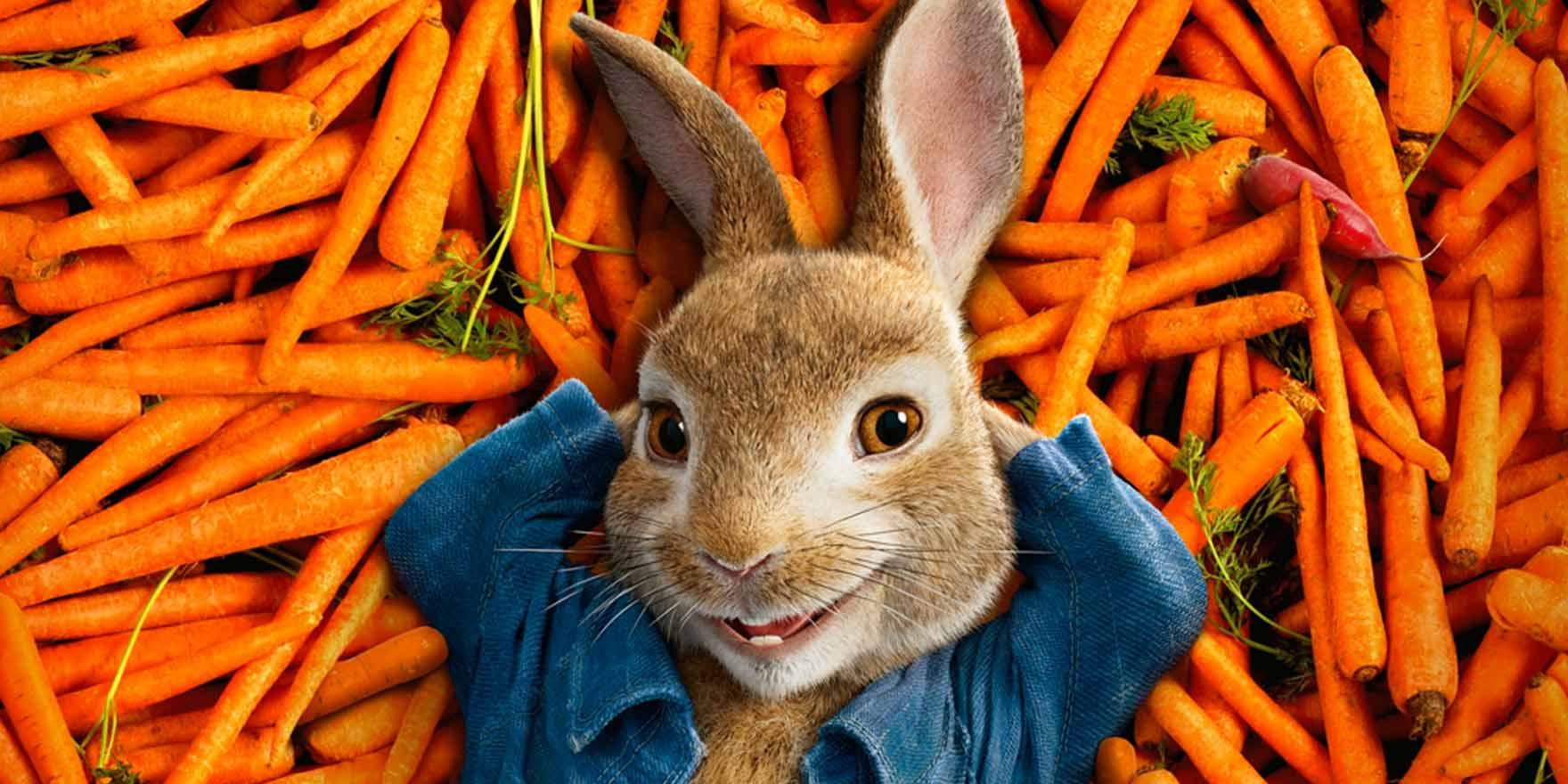 Peter Rabbit - Header Image