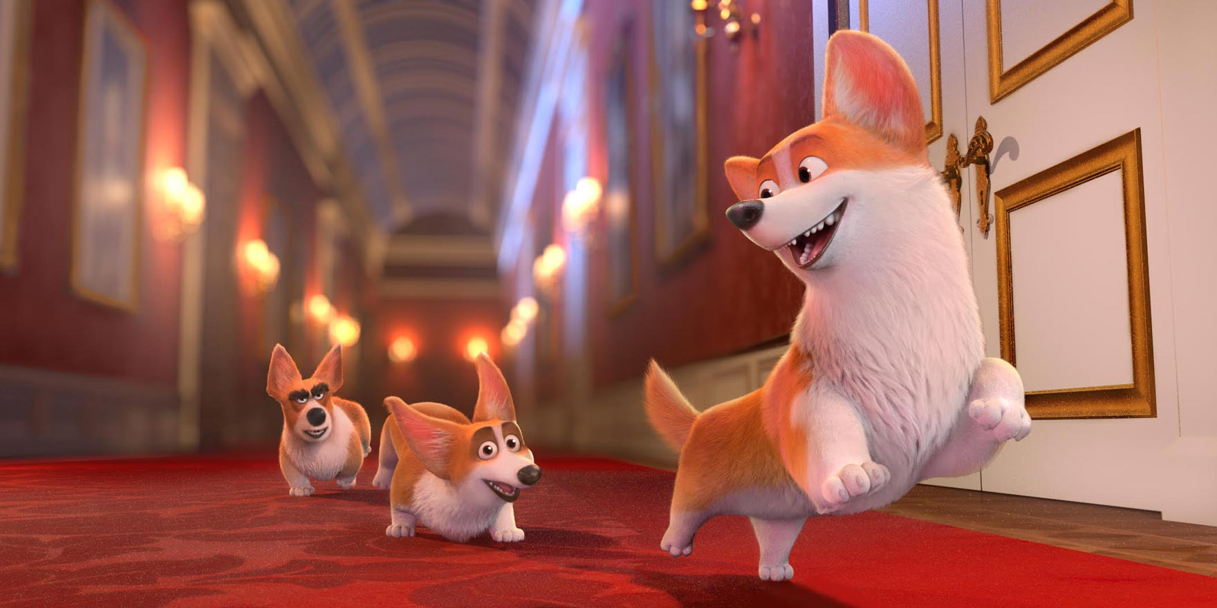 Royal Corgi - Header Image