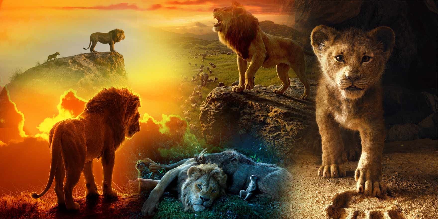The Lion King - Header Image